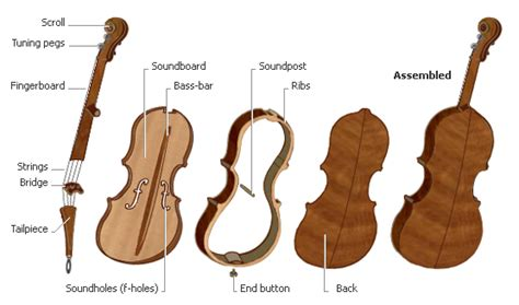 The Violin-Makers of Cremona | ITALY Magazine