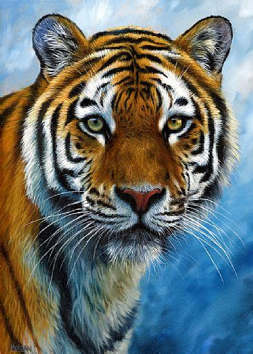 Jason Morgan - WILDLIFE, SPECIALIZING IN BIG CATS AND